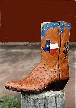 Ostrich Boot w/10-inch Top, Cactus & Texas Design