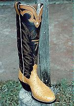 Full-Quill Ostrich Boot, Tops feature a Brand & Star on the Collar