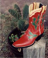 Red Pee-Wee Boot with Cactus Design